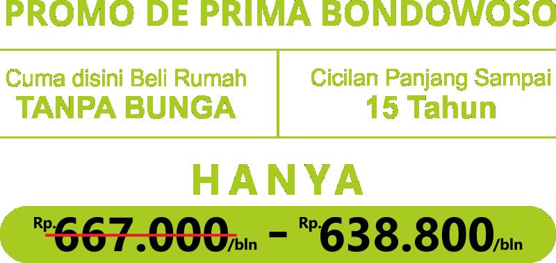promo_DPB (1)
